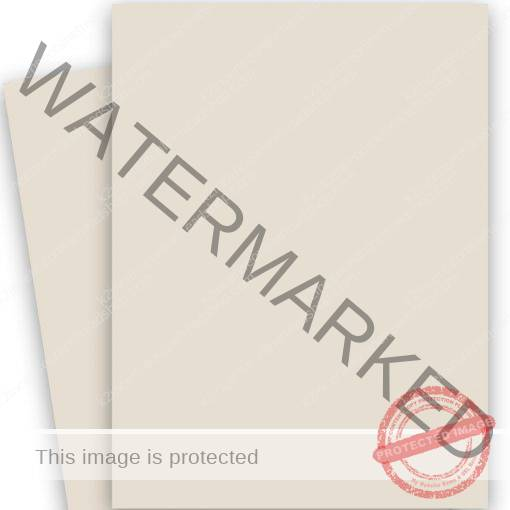 Curious Skin Stone Paper